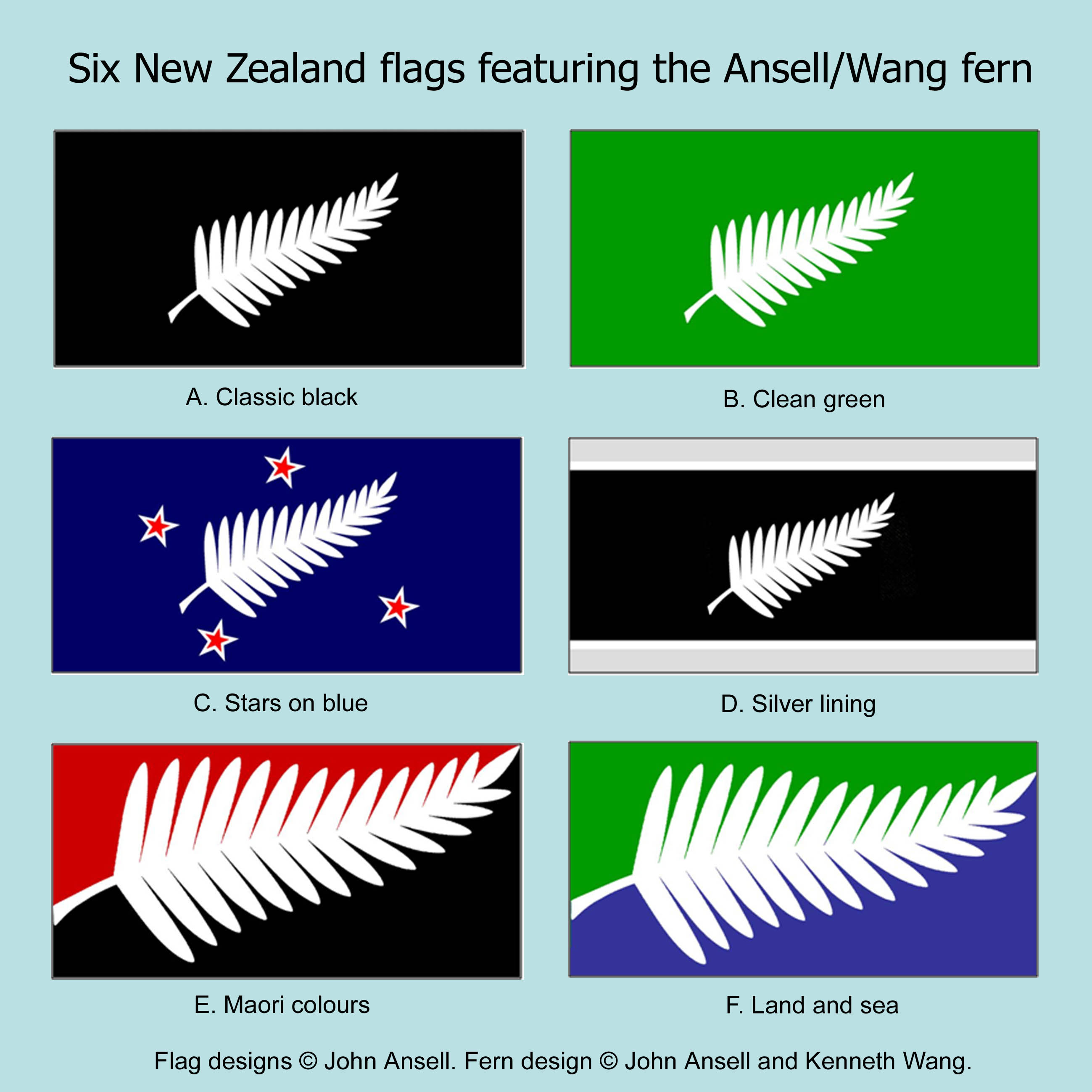 Let's fly this fern | John Ansell