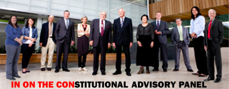 CONstitutional Advisory Panel - IN ON THE